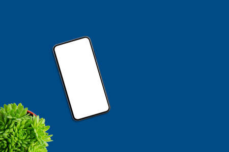Phone on blue surface. Isolated screen for mockup, app design presentation. Plant and copy space beside