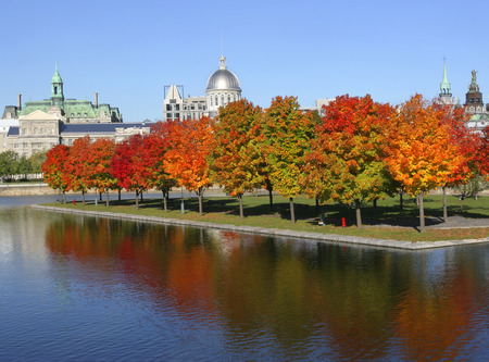 Autumn colors, Bonsecours Market and City Hall, Montreal