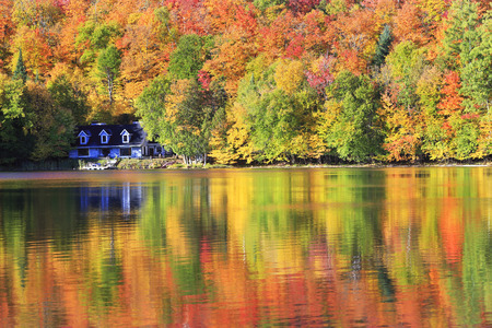 Autumn colors and fog reflections on the lake, Quebec, Canada