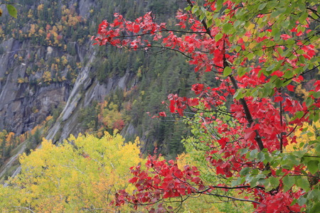 Autumn colors in Saguenay, Quebec