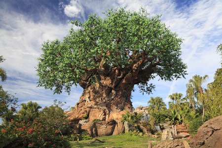 Tree of Life in Disney Animal Kingdom Theme Park, Orlando, Florida