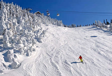 Skier on Mont Tremblant slopes with aerial gondolas on the background and frozen trees, Quebec, Canada Stockfoto