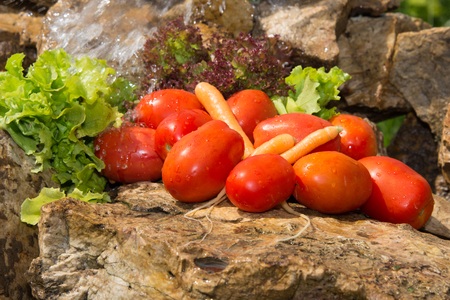 Sport and diet. Vegetables and fresh water. Healthy eating