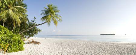 panorama beach: Vista panoramica di tropicale palm spiaggia di sabbia di albero, bianco e blu Laguna di Ihuru Island e Vabinfaru Island Maldive in Mal & Atilde & copia, Atollo Nord