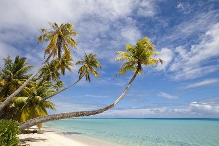 Plage de sable de blanc, palmier et lagon bleu Banque d'images