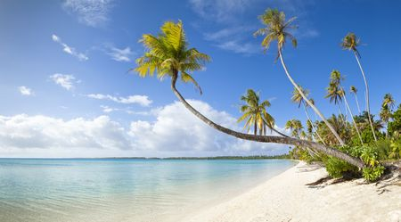 mauritius: Tropische wit zand strand panoramisch uitzicht