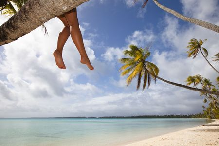 Legs of women seat on palm tree in a white sand beach of a paradise island Stock Photo