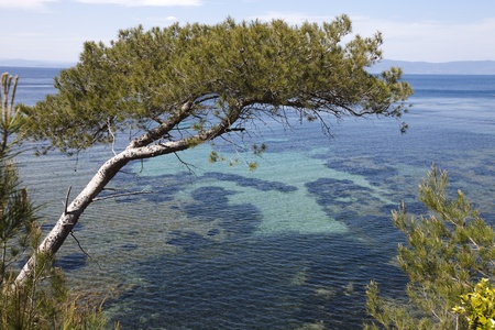 cros: Panoramic view of Mediterranean Sea in south of France. Point of view from Port Cros National Park near Toulon. Stock Photo