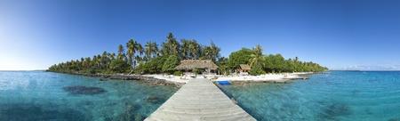 martinique: �rboles arena de playa y palmeras de para�so blanco de una vista panor�mica de la isla tropical