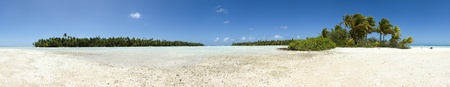 guadeloupe: Paradise white sand beach and palm tree of a tropical island panoramic view