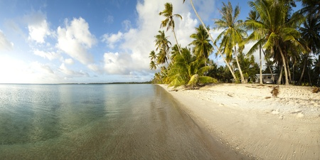 Paradise white sand beach and palm tree of a tropical island panoramic view Stock Photo - 10409344