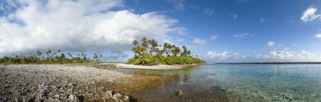 Paradise white sand beach and palm tree of a tropical island panoramic view