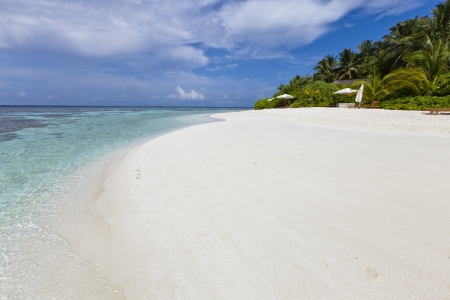 guadeloupe: Luxury hotel in tropical island with white sand beach, blue lagoon, ocean view and palm tree
