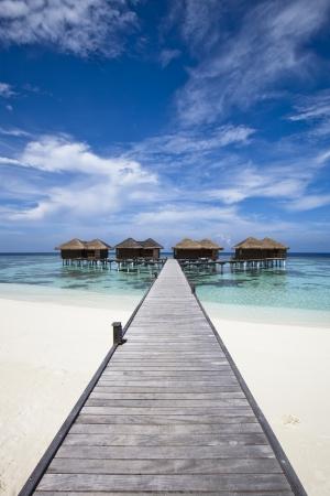 H�tel de luxe en �le tropicale avec plage de sable blanc, lagon bleu, vue sur l'oc�an et palmier