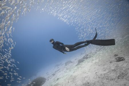 A woman freediver swim underwater with a very big school of fishes in blue pacific ocean. Kingdom of Tonga.