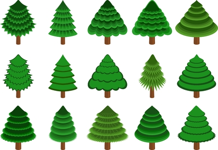 set of 15 different vector conifers on white background