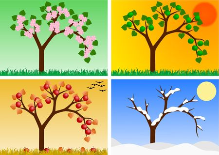 quartet: apple tree in four seasons