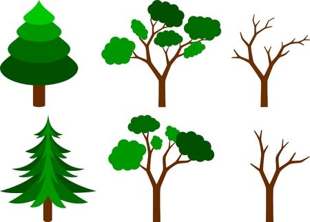 Sammlung von aus Nadelholz, grünen und nackt Bäume