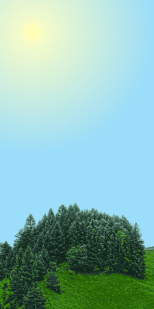 grove: landscape vertical banner, forest with meadow and sun sky, grove with place for text in sky, vector illustration