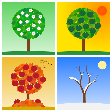 four season of year - spring, summer, autumn, winter with tree on typical seasonal background, vector illustration