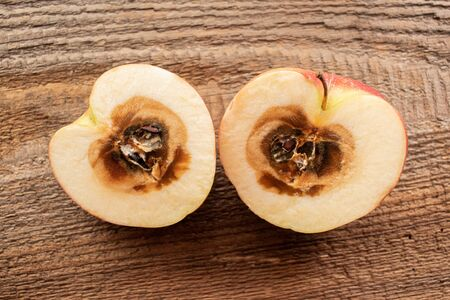 halved apple with rotten core on natural wooden background