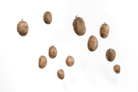 starvation: Brown potato tubers flying in the air. Isolated image on white background.