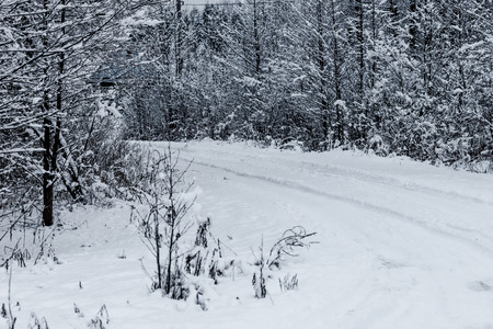 non urban: Country road among the trees in winter village in Russia.