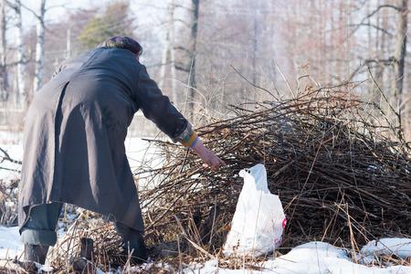 brushwood: Woman burning brushwood garbage in the spring. Stock Photo