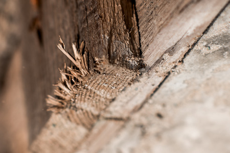 to scrape: Textural image. Surface of rough wood in macro. Stock Photo