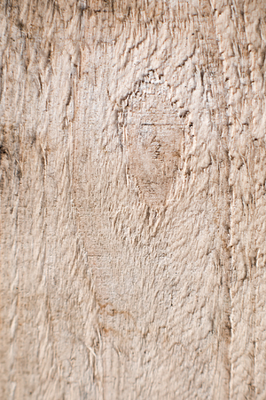 rough background: Textural image. Surface of rough wood in macro. Stock Photo
