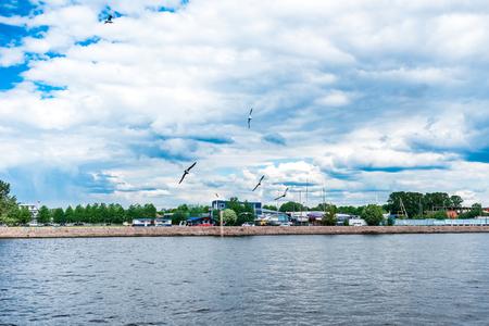 malaya: Seagulls over Malaya Neva river, St.Petersburg, Russia.