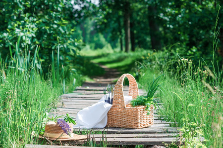 potherbs: Rectangle basket with green vegetables, forks and knives standing on the plank footway among the grass. Stock Photo