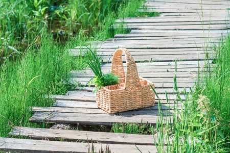 footway: Rectangle basket with green vegetables standing on the plank footway among the grass.