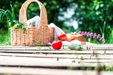 potherbs: Rectangle basket with green vegetables and tableware, red tomatoes and green cucumbers on the plank footway among the grass. Stock Photo