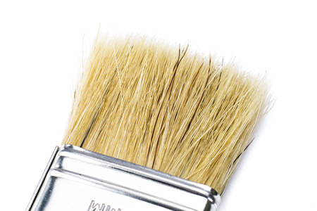 distemper: Flat paintbrush closeup detail isolated over white background