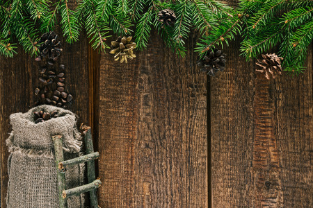 spattering: Pine nuts spattering from pine cones to bag of sackcloth under the top evergreen frame Stock Photo