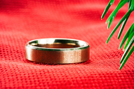 evergreen branch: Golden ring on red textured fabric under evergreen branch. Macro detail view