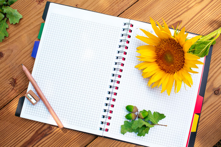 Opened paper notebook with wood pencil and sharpener and acorns and sunflower on wood background