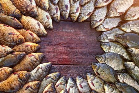 Caught carp fish on wood. Catching freshwater fish on wood background. Round a lot of bream fish, crucian or roach on natural wood background. Background from big quantity river fishes on wooden boards laid out by a circle. Free space for your text.