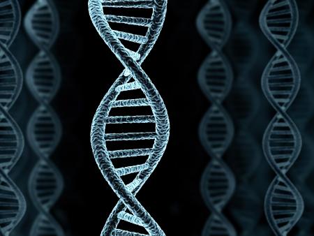 researches: Modello a spirale del DNA, la preparazione (fatto in 3d)