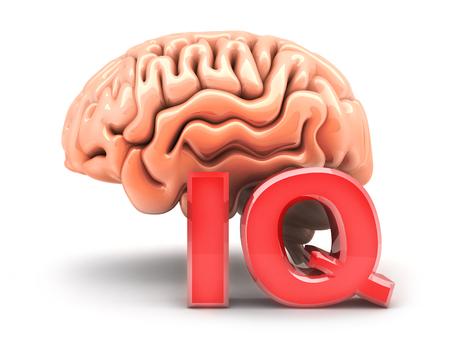Human brain and sign IQ. 3d illustration Stock Photo