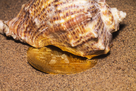 Crypto currency bitcoin in the sand in the shell. Stockfoto