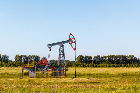 The oil pump works in summer in a green field against a background of green trees and a blue sky. Stock Photo