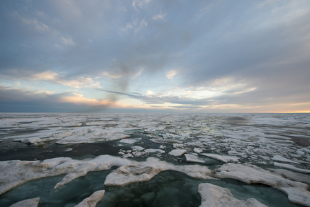 drifting ice: Arctic Sunset over Floating Ice Floes travel on icebreaker