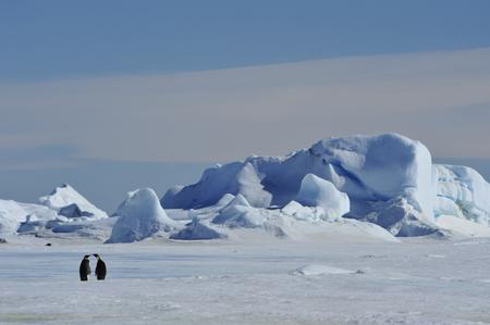 Prachtig uitzicht op de ijsbergen Snow Hill Antarctica