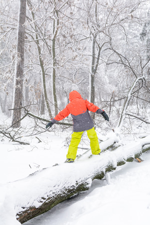 tree vertical: Child walking over fallen down tree. Vertical view of child walking over the trunk of a fallen tree in the park in winter. Stock Photo