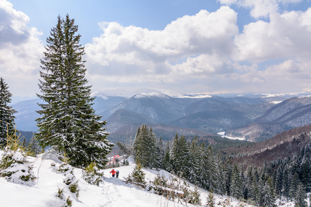 skiers: Panoramic view with two skiers and covered trees. Winter landscape of snow-covered trees on mountains with beautiful sky.