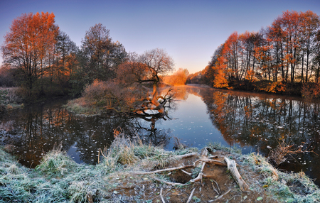 Cold autumn morning with a river in Belarus.Panoramic views of the river and lonely yellowed oak.The first rays of the sun illuminate the cold autumn trees.Bright morning sun illuminate the treetops.
