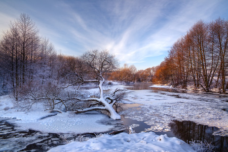 A beautiful european winter landscape with a frozen river, a cloudy sky and a lonely fallen tree. Lonely fallen tree on the background of the frozen, icy river at sunset. Belarus, Europe