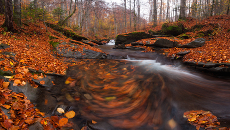 Colorful misty autumn landscape with beautiful waterfall at mountain river in the forest with red foliage and swirling leaves in water.Trees with red leaves.Stones with moss in the water.Long Exposure